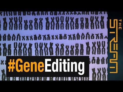 Wat zijn CRISPR babies?