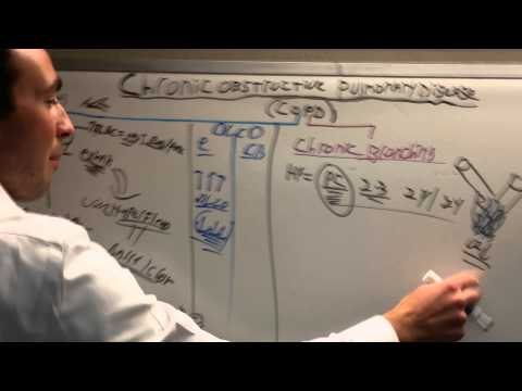 saul kassin usmle step 1 2 3 pulmonolgy review part 3b