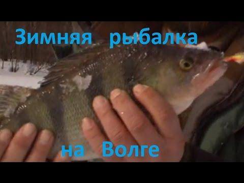 рыбалка в нижнем новгороде на волге видео