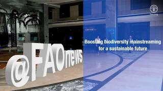 Biodiversity Mainstreaming Across Agricultural Sectors