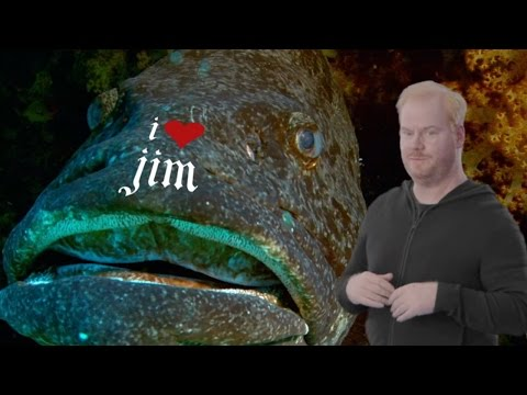 The Jim Gaffigan Show Season 2 Teaser