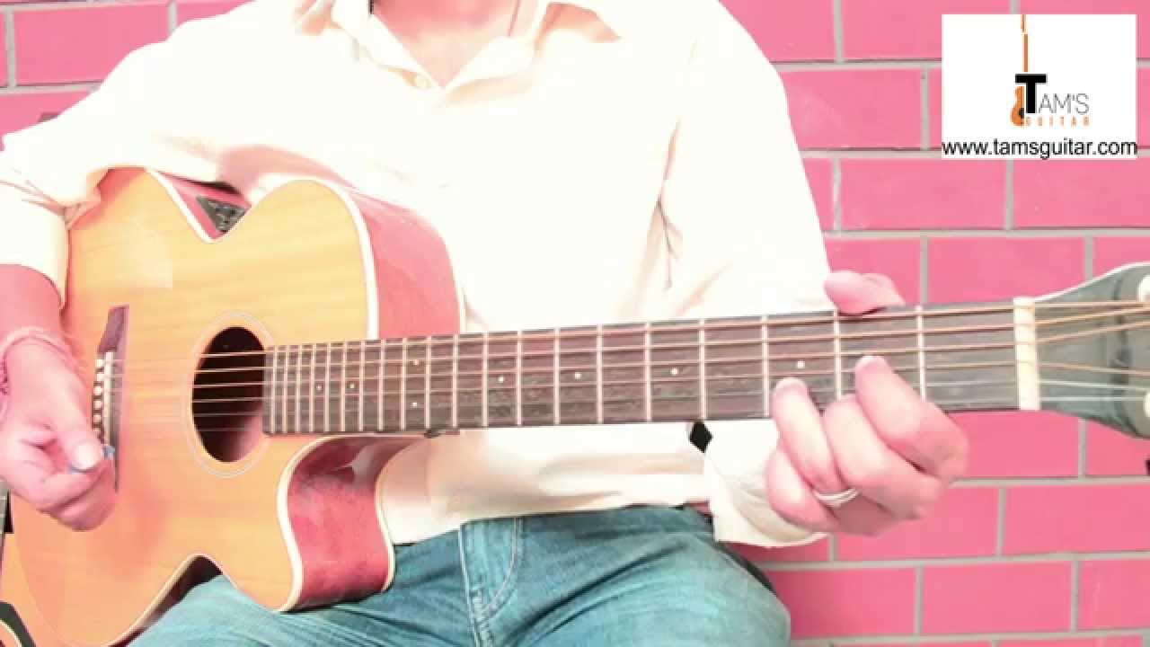 Summer of 69 strumming guitar lessons for beginners (www.tamsguitar.com)