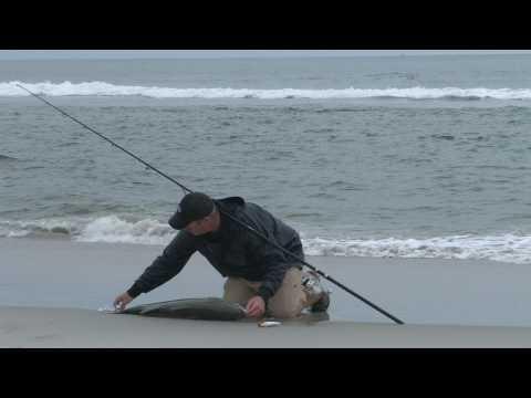 42″ Striped Bass Off Crane Beach Ipswich MA 8/16/10