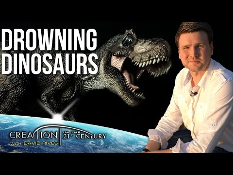 Did Dinosaurs Drown in Noah's Flood? / Creation in the 21st Century