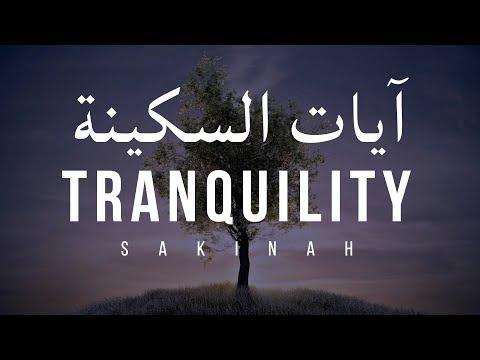 AYAT OF TRANQUILITY - SAKINAH  أيات السكينة لدفع الهموم