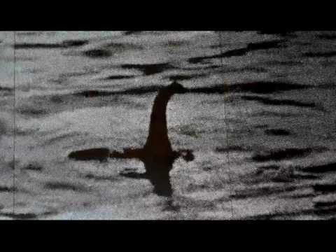 Nessie - Check out this 2012 video of the Loch Ness Monster - Nessie. This is the Super Bowl of Loch Ness films - the information was caught live by Steve Alten (and ...