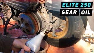 9. Honda Elite 250 Transmission / Gear / Final Drive Oil Change Assembly