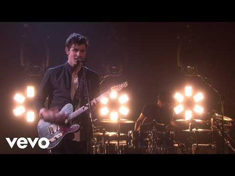 Video Shawn Mendes - In My Blood download in MP3, 3GP, MP4, WEBM, AVI, FLV January 2017