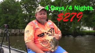 Summer Fishing Packages for Bluegill