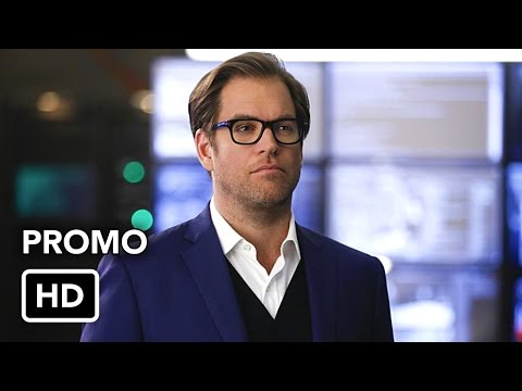 Bull 1.06 (Preview)