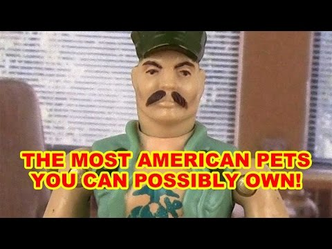 The Most AMERICAN Pet You Can Own