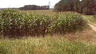 Video Útok z kukuřice MP3, 3GP, MP4, WEBM, AVI, FLV Agustus 2017