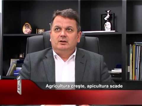 Agricultura creşte, apicultura scade