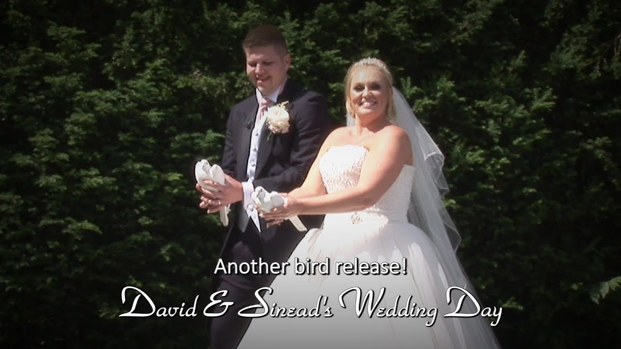 David & Sinead's Wedding:Bird Release 2
