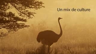 Retrouvez l'auteur et ses ouvrages sur Edilivre.com : https://www.edilivre.com/catalog/product/view/id/773990/s/poesie-de-l-oubangui-honore-douba#.