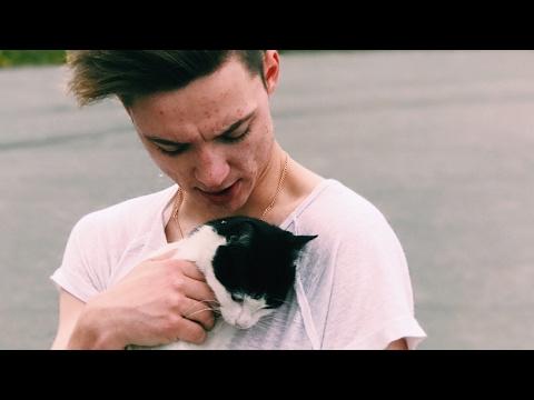 Der ganz normale Wahnsinn #5 - Katzen | Die Lochis видео