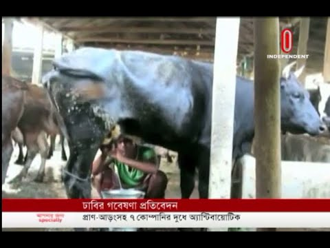 DU tests on Aarong-Milk Vita- Pran milk find detergent and formalin (25-06-19) Courtesy: ITV