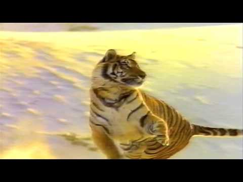 "Exxon Gasoline ""rely on the tiger"" Commercial 1992"