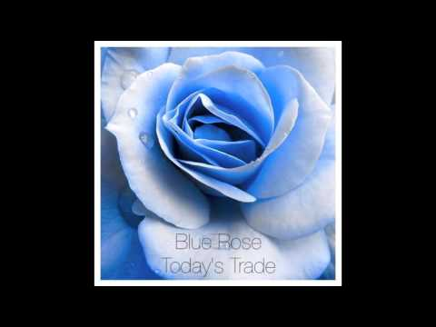 Blue Rose EP - Today's Trade