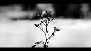Video Chopin - Spring Waltz (Mariage d'Amour) [Please Read Description] MP3, 3GP, MP4, WEBM, AVI, FLV Juli 2018