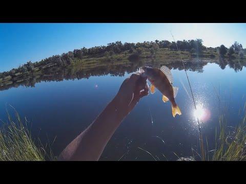рыбалка сверху р орель