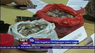 Video Polisi Gagalkan Perdagangan Satwa Langka, Menyamar Sebagai Pembeli - NET16 MP3, 3GP, MP4, WEBM, AVI, FLV Juli 2017