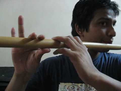 FLute lesson 2.flv ( pLease comment on my video)