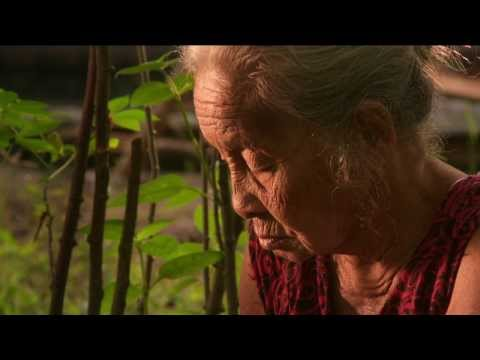 The Look of Silence Clip 'Chopping'