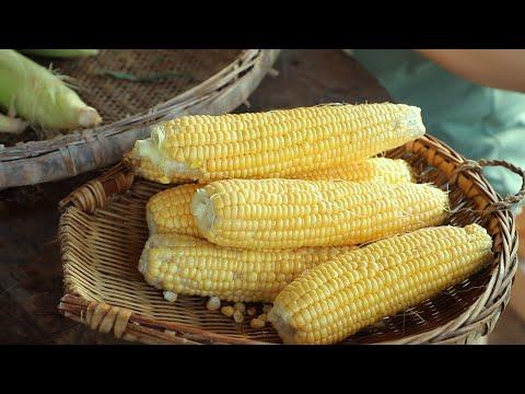 【二米炊烟】Corn 掰下新鮮玉米做了饃饃和涼蝦,和家人一起分享中國傳統小吃