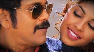 O Pilla Pilla Song Trailer - Bhai - Nagarjuna, Richa Gangopadhyay