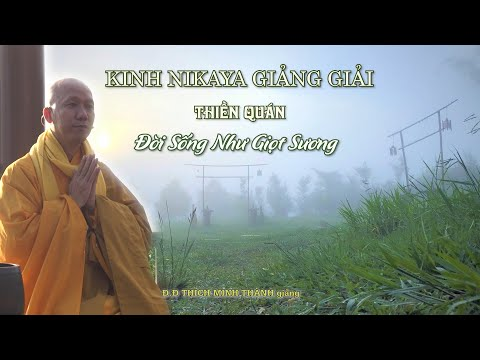 Kinh NIKAYA Giảng Giải - Thiền Quán - Đời Sống Như Giọt Sương