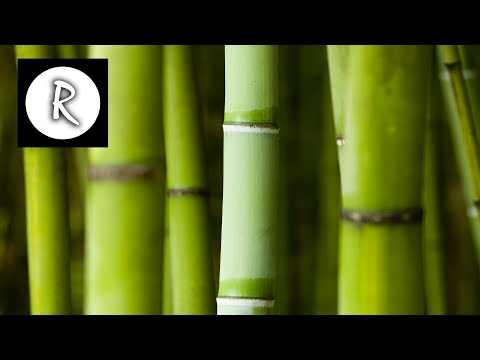 Video 3 HOURS of HEALING ZEN Music with water sounds - Meditation,Sleep & Spa,Yoga,Reiki,Study download in MP3, 3GP, MP4, WEBM, AVI, FLV January 2017