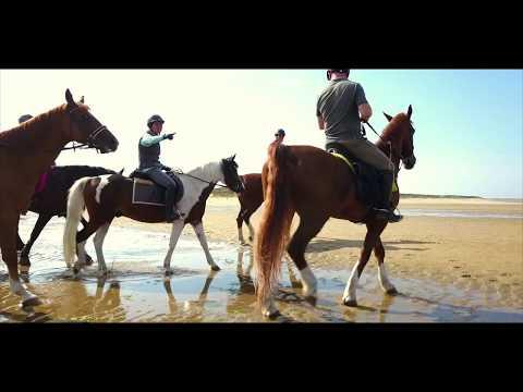 Horseback Riding Oostvoorne beach / Strandrit Manage Tinte