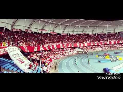 BRSC AMERICA 2-0 quindio 25/04/2016 - Baron Rojo Sur - América de Cáli