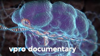 Hack your DNA with CRISPR - VPRO documentary - 2018