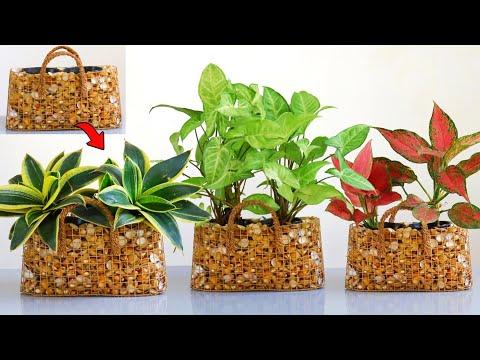 Amazing Indoor Plants Ideas / Mini Gabion Ideas / Plants Decoration Ideas at Home