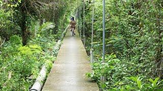 Khlong Khuean Thailand  city pictures gallery : Biking in Bangkok, biking tour full video