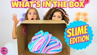 SLIME CHALLENGE - WHAT'S IN THE BOX!
