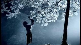 Blind Ibrahim - Are Daye 2009 New Cd Album Bo Yakam Jar