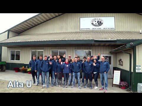 Alta U | Посещение фермы Rosy-Lane Holsteins