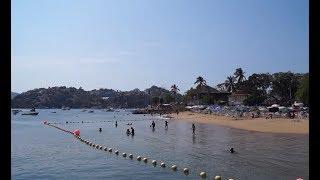 EL genio del mar azul Coka Jr.Originarios de Acapulco Gro.