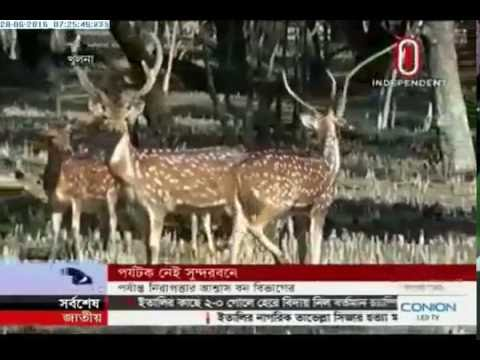 Sundarbans registering less tourists (28-06-2016)