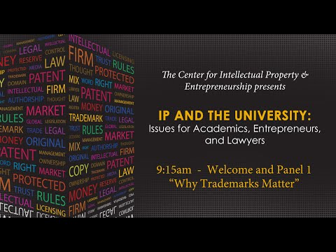 Panel 1: Why Trademarks Matter