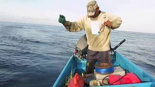 Video Tuna Fisherman (Handline) MP3, 3GP, MP4, WEBM, AVI, FLV Januari 2019