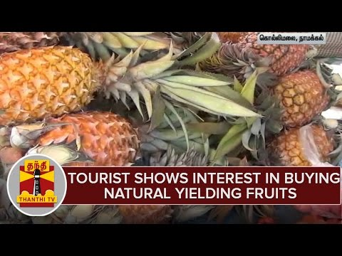 Tourist-Shows-Interest-in-Buying-Natural-Yielding-Fruits-From-Kolli-Hills-Namakkal