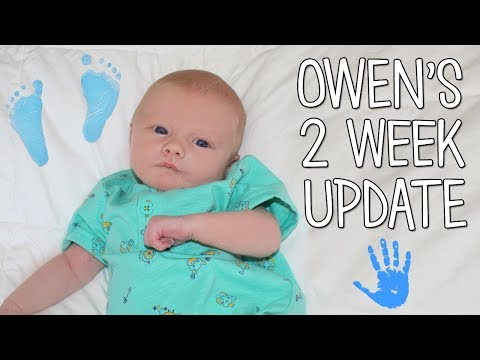 Baby Owen 2 Weeks Old Update