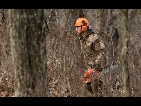 WHS Turnkey Habitats and Whitetail Services