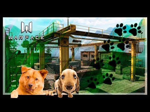 WARFACE NOOB À PRO #24 Gameplay Da Cachorrada