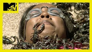 Video 6 'Fear Factor' Moments That'll Make Your Skin Crawl 🐛 | MTV Ranked MP3, 3GP, MP4, WEBM, AVI, FLV Februari 2019