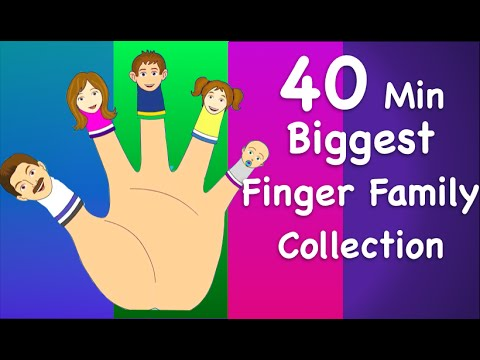 family - Finger Family Collection | Non-Stop 40 Minutes | Biggest Collection of Finger Family For Children New Video Every Week Subscribe Now! http://bit.ly/1hsh63t V...